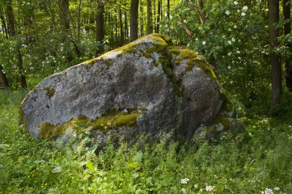 Zdjęcie obiektu turystycznego: Diabelski Kamień w Kamienicy